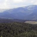 Карпати 2014