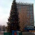 Місто:  Бердянськ