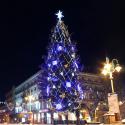 Місто: Івано-Франківськ