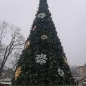 Місто: Вінниця
