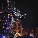 Місто: Львів